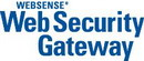 Websense Web Security Gateway